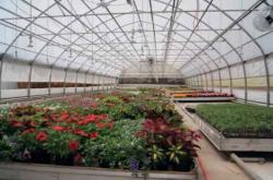 جزوه طراحی گلخانه